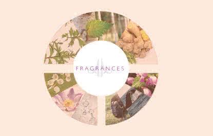 parfum-d04_2