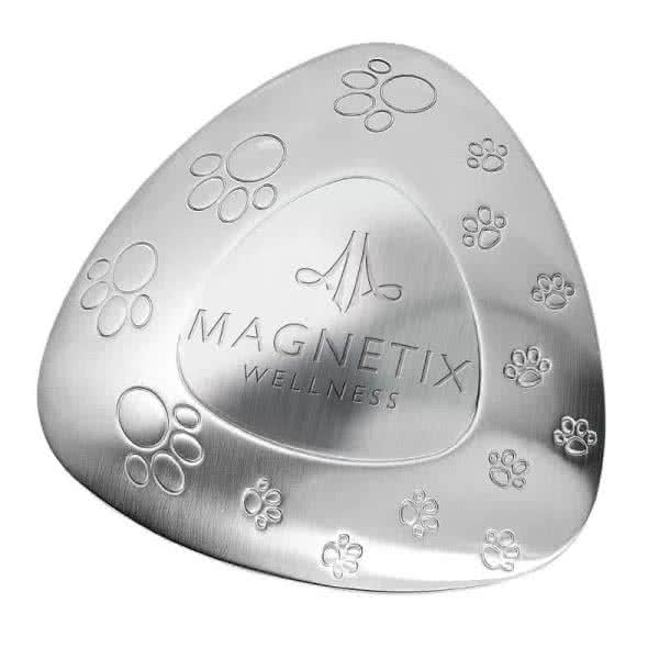 Pet Water Bowl Magnet in large